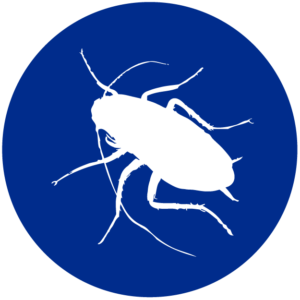 icone-biotecnica-disinfestazioni-genova-01-01