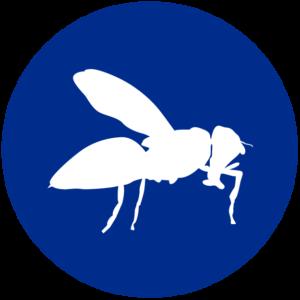 icone-biotecnica-disinfestazioni-genova-01-02