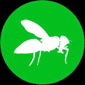 icone-biotecnica-disinfestazioni-genova-02